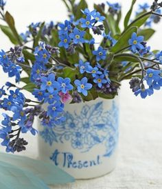 Forget-Me - the language of flowers