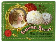 """A beautiful young girl and giant blooms illustrate the cover of the Carrie Lippincott 1902 catalog. Carrie Lippincott, the self-proclaimed """"pioneer seedswoman"""" and """"first woman in the flower seed industry"""" established her mail-order flower seed business in Minneapolis in 1891. Sending out smaller 5 inch by 7 inch catalogs with colorful covers, her business was aimed at women customers."""