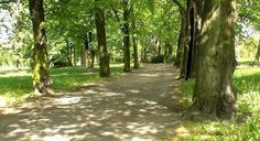 DOM PRZY PARKU  http://www.aartapartment.eu/wynajem/118/view/54-Sprzeda%C5%BC%20-%20Dom/43/dom-przy-parku.html
