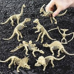 Dinosaur Skeletons | 12ct