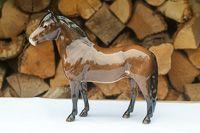 Front view of Beswick Exmoor Pony model 1645 Heatherman