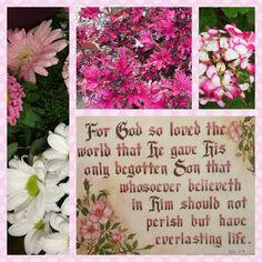 John 3:16 KJV Bible Verses Kjv, Scripture Art, Bible Quotes, Scripture Pictures, Christian Messages, Christian Quotes, Christian Faith, Plan Of Salvation, Strong Faith