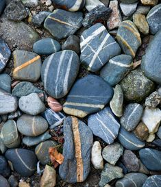 love to collect striped rocks