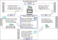 Transformările apei și operații cu numerele de la 0 la 20-materiale didactice Experiment, Homework Sheet, In Natura, Bullet Journal, Science, Album, Math, School, Kids
