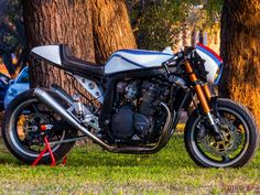 Radical custom Suzuki GSX Cafe Racer built by Dino Cycles from Argentina. Check out this awesome custom cafe racer! Yamaha Cafe Racer, Cafe Racer Tank, Moto Cafe, Custom Cafe Racer, Cafe Racer Build, Cafe Racers, Motorcycle Gifts, Suzuki Motorcycle, Cafe Racer Motorcycle