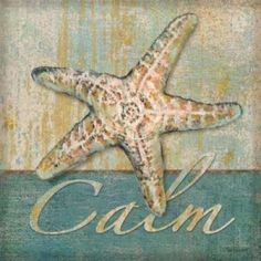 Posterazzi Calm Canvas Art - Todd Williams (24 x 24)