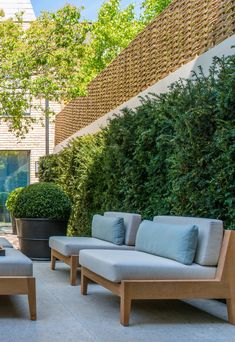 City Gardening Super-high willow fencing on top of high white wall and conifer hedging creates seclusion in this London garden courtyard by Luciano Giubbilei. PVD stainless steel planters by John Desmond Ltd. Backyard Pavilion, Backyard Patio, Backyard Landscaping, Small Terrace, Terrace Garden, Willow Fence, Low Maintenance Garden Design, London Garden, High Walls