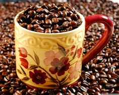 Collection of Coffee Cup Images on HDWallpapers 2048×1152 Coffee Cup Images Wallpapers (41 Wallpapers) | Adorable Wallpapers