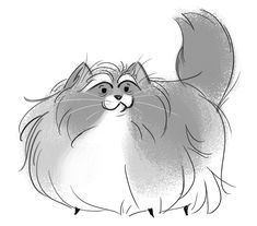 305: Fluffy Old Calico