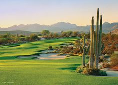 4. We-Ko-Pa (Saguaro), Ft. McDowell, Arizona... #golf #courses