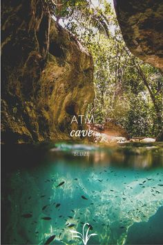 In the heart of the Belizean rainforest lies one of the most awe-inducing sights in all of Central America. Come experience the infamous ATM Cave. #xoBelize