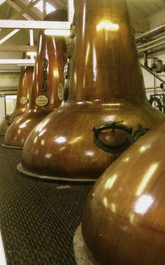 Tamdhu scotch whisky distillery