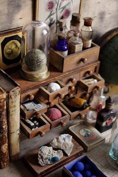 Collections displayed in a haberdashery cabinet.