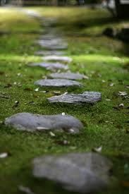 """""""One of the secrets of life is to make stepping stones out of stumbling blocks.""""    ~ Jack Penn"""