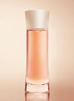 Armani Mania Giorgio Armani perfume - a fragrance for women