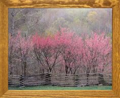 Impact Posters Gallery Redbud Tree Grove in Bloom Natchez Trace Parkway Landscape Wall Decor Brown Rust Framed Picture Art Print