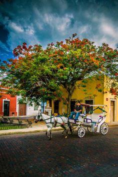 Postal de una de las callecitas de la colonial ciudad de #Merida, una de las localidades de #Mexico más pintoresca.