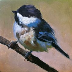 Baby Black-capped Chickadee - Bird Painting - Open Edition Print of Original Oil Painting by shaunafinnart on Etsy https://www.etsy.com/listing/72423863/baby-black-capped-chickadee-bird