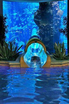A waterslide through a shark tank at Golden nugget, Las Vegas