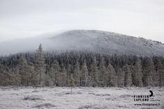 Ylläs fell in winter, Finnish Lapland. Photo by Jani Kärppä/ Lappikuva. #filmlapland #arcticshooting #finlandlapland