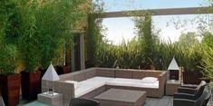Modern Roof Garden Designs