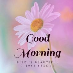 good morning wishes / good morning quotes - good morning - good morning quotes for him - good morning quotes inspirational - good morning wishes - good morning beautiful - good morning quotes funny - good morning greetings Good Morning Image Quotes, Good Morning For Him, Good Morning Handsome, Good Morning Images Hd, Good Morning Funny, Good Morning Flowers, Happy Morning, Good Morning World, Good Morning Picture