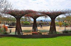 Robert Irwin's rebar bougainvillea 'trees' at the Getty Center