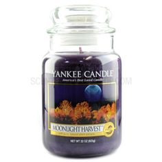 Moonlight Harvest ... These luxury scented candles capture the fragrances of pumpkin and spices drifting from a kitchen window on a crisp autumn evening. Yankee Candle Fall, Yankee Candle Scents, Yankee Candles, Fall Scents, Home Scents, Halloween Candles, Yankee Candle Halloween, Aromatherapy Candles, Scented Candles