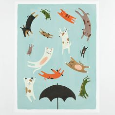 Raining Cats and Dogs Poster, Quill & Fox