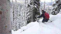 It won't stop snowing!  Insane Day at Fernie Alpine Resort