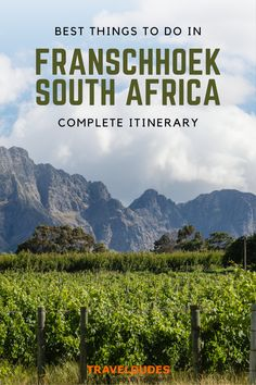 Best Things to Do in Franschhoek | If you want to experience the best of the beautiful Cape Winelands, make sure to include a visit to the Franschhoek wine region. This guide includes all of the best things to do | Travel Dudes #Franschhoek #SouthAfrica #WineTasting #WineRegion | wine tram franschhoek | franschhoek restaurants | franschhoek wineries Luxury Travel, Us Travel, Travel Tips, Cape Town South Africa, Wineries, Africa Travel, World Heritage Sites, Dream Vacations, Travel Inspiration
