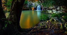 Kondalilla Falls Maleny Queensland Australia  #water #kondalilla #falls #maleny #queensland #australia #photography