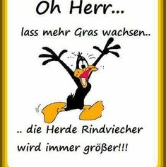 Oh herr lass mehr Gras wachsen - Cartoon Videos Kids For 2019 Unicornios Wallpaper, Funny Memes, Jokes, Funny Character, Happy Paintings, Funny Comments, Tabu, Life Lessons, Quotations