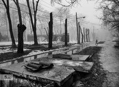 It's a nasty day  Photo by Andriy Solovyov on www.solovyov.biz