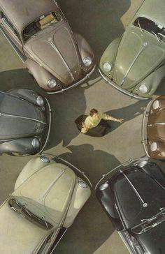VW 1955