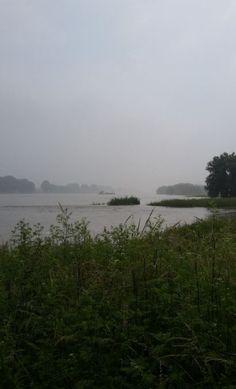 Rheinaue am Fähranleger bei Langel, Foto: S. Hopp
