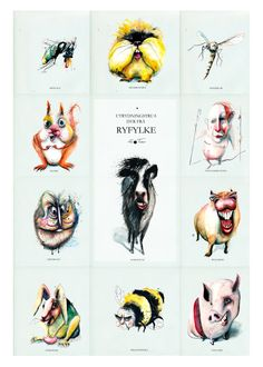Utrydningstrua dyr frå Ryfylke. Hilde Thomsen