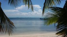 Isla Mujeres, México (#IslaMujeres #Cancún #Caribe #México #Playa #RivieraMaya)
