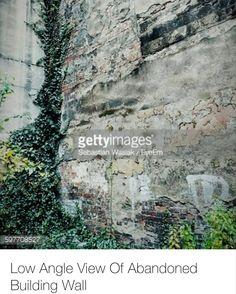 Sebastian #wasiak #eyeem #gettyimages #bestshot #abandoned #building #wall #ivy by wasiak.sebastian