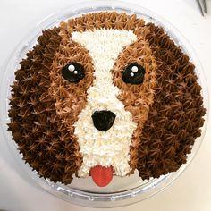 Beagle Cake for Grant's birthday. Puppy Birthday Cakes, Dog Birthday, Birthday Cupcakes, Puppy Cupcakes, Puppy Cake, Dog Cakes, Cupcake Cakes, Popsicle Recipe For Kids, Brithday Cake