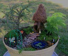 It's a tiny fairy garden!