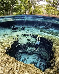Amazing Places to Visit in Florida Ginnie Springs, Florida, U.Ginnie Springs, Florida, U. Vacation Places, Dream Vacations, Vacation Spots, Vacation Trips, Vacation Ideas, Cool Places To Visit, The Places Youll Go, Fun Places To Travel, Magic Places