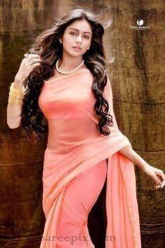 Beautiful Girl Indian, Most Beautiful Indian Actress, Beautiful Saree, Beauty Full Girl, Beauty Women, Saree Models, Saree Look, Beautiful Bollywood Actress, Beautiful Actresses