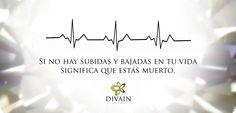 #frasesdivain