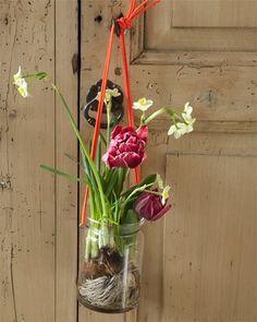 Al voelt het niet zo met die kou, de lente hangt echt al in de lucht... of in een potje ;-) Leuk ideetje om zelf te maken. Simpel met een touwtje, een glazen potje en fleurig groen.