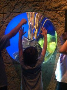 Long Island Aquarium. GREAT day trip !