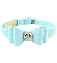 Bought this Gorgeous Tiffany Color Collar for my Sebastian! LOVE!!