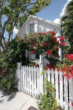 Florida Memory - Trellis over entrance gate to conch house at 923 Southard Street - Key West, Florida