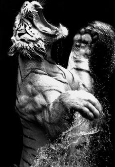 Tiger in Animals by Nick Brandt My favorite animal and favorite photographer. <3