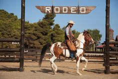 Outdoor Photos from The Ranch Outdoor Photos, The Ranch, Rodeo, Horses, Animals, Outdoor Pictures, Animaux, Animales, Rodeo Life